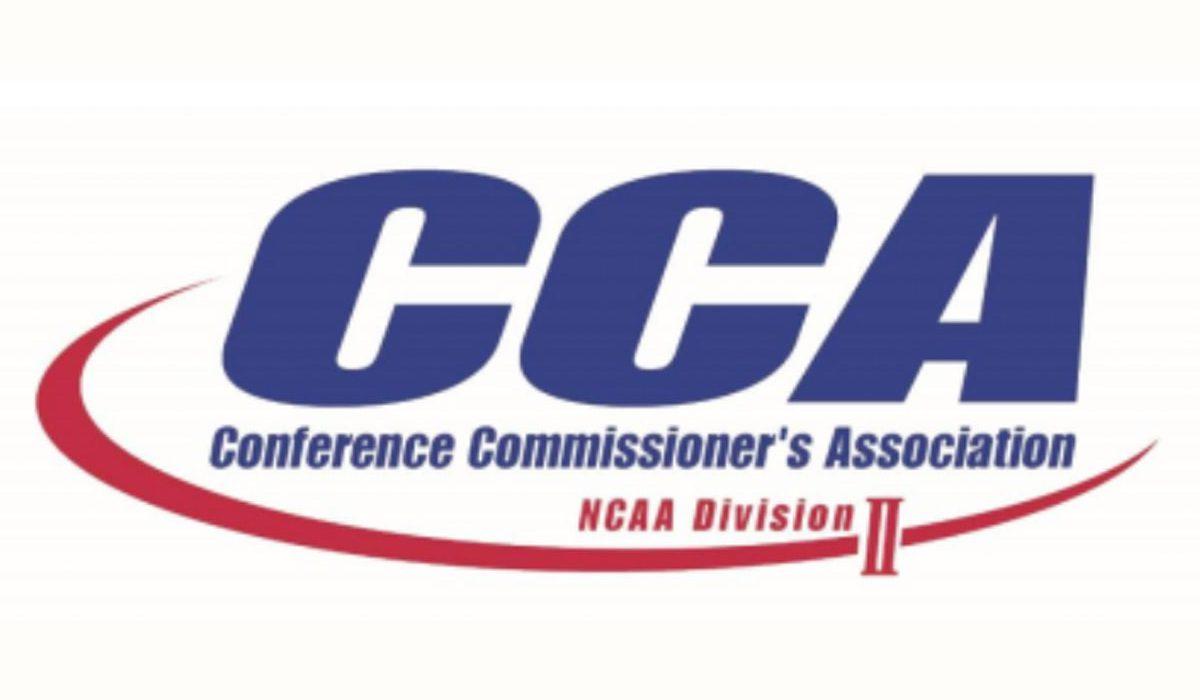 D2CCA-Logo-A