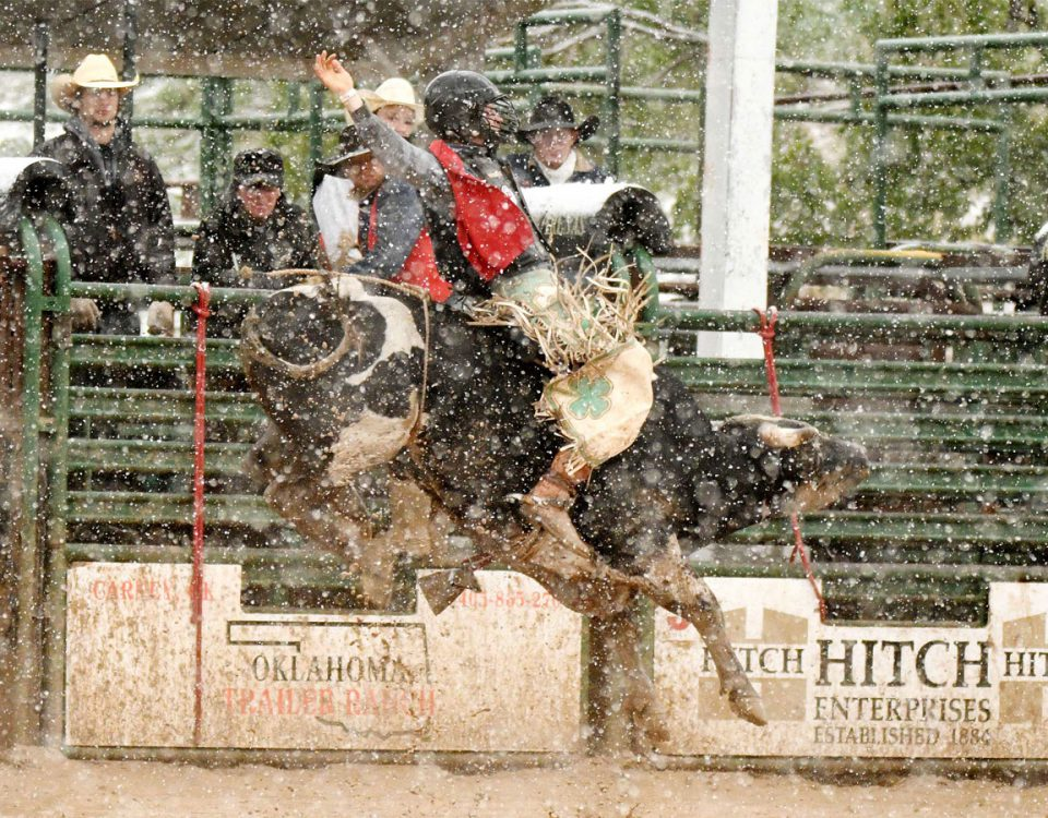 """Senior Josh Frost won the men's all-around title and the bull riding this past weekend at the """"Doc"""" Gardner Memorial Rodeo. —Photo by Dale Hirschman"""